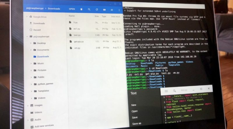 Linux on your Chromebook coding