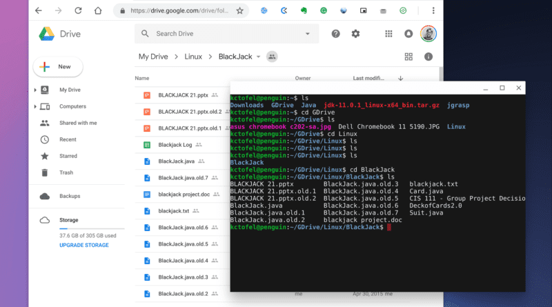 Google Drive files on web and locally in Linux