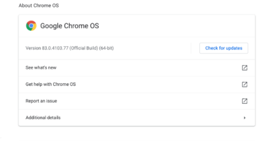 Chrome OS myths software support date